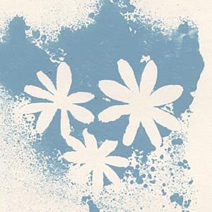 Dr. Octagon Blue Flowers cove