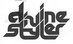 Divine Styler logo sketch